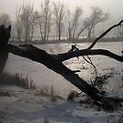 Frozen & Broken by tonymm6491
