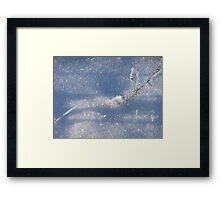 Chrystals as is second chance to beauty Framed Print