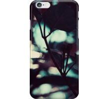 A Perfect Place iPhone Case/Skin