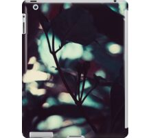 A Perfect Place iPad Case/Skin
