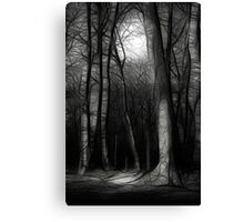 Moonlit Canvas Print