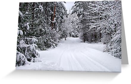 Snowy Country Road by George Cousins