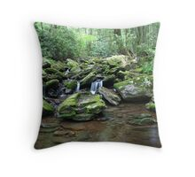 Cool waters of Mineral Creek Throw Pillow