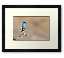 Mountain Blue Framed Print