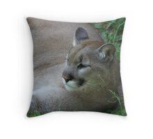Here kitty kitty Throw Pillow