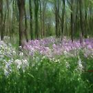 Wild Flower Forrest by ezcat