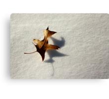 Between The Seasons Canvas Print