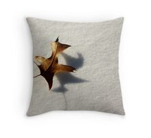 Between The Seasons Throw Pillow