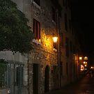Village Lights by Lolabud