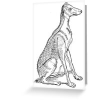 A Study of Boaz Greeting Card
