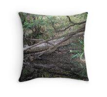 Brinbin Nature Reserve Throw Pillow