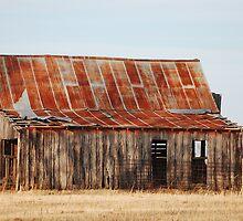 Oklahoma Barn by TKayW