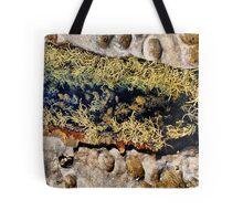 Rocks & Seaweeds II Tote Bag