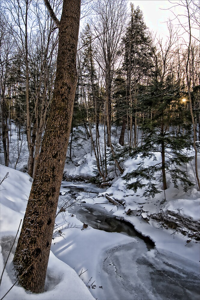 Copelands Creek - Winter Scene by RBFoto