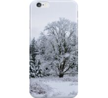 Snowy Pasture iPhone Case/Skin