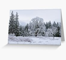Snowy Pasture Greeting Card