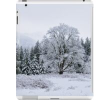 Snowy Pasture iPad Case/Skin