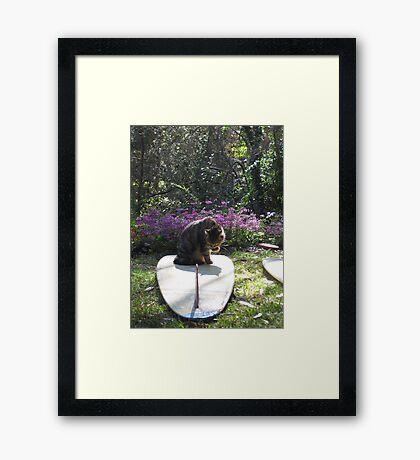 Mr Frodo Inspects My Work 2 Framed Print