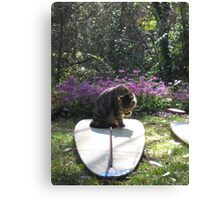 Mr Frodo Inspects My Work 2 Canvas Print
