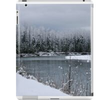 Snowy River iPad Case/Skin