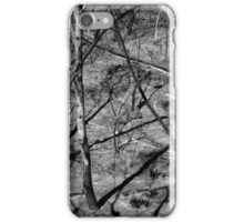 Scary Trees- Sampson Flat Bushfire 1 iPhone Case/Skin