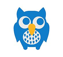 Cute blue owl Photographic Print