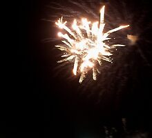 port fairy fireworks on new years eve... by partyofive
