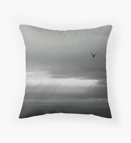 flying solo... Throw Pillow