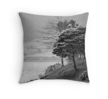 The trees and the lake Throw Pillow