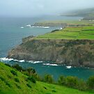 Azores coastal landscape by Gaspar Avila