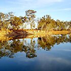 Mirror image by Clive