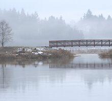 Wetland Foot Bridge by Randy Richards