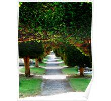 """""""Yew Tree Promenade"""" Poster"""