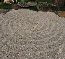 Concentric white circles by Marilyn Baldey