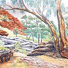 Barraranna Gorge, Flinders Ranges by Virginia  Coghill