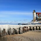 Point Betsie Lighthouse  by Vicki Oseland