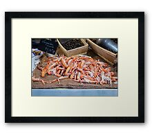 Fresh Raw Langoustine Lobsters Framed Print