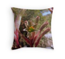 Kangaroo Paw Throw Pillow