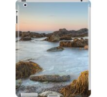 Seascape at Sachuest Point Wildlife Refuge iPad Case/Skin