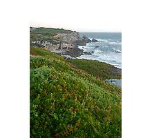 Green Coast Photographic Print