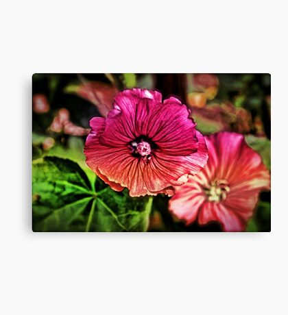 Flora and Fauna in Pink Canvas Print