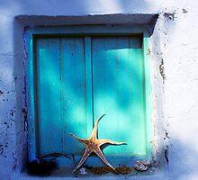 Starfish Window by secondcherry