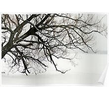 The Leaning Tree Poster