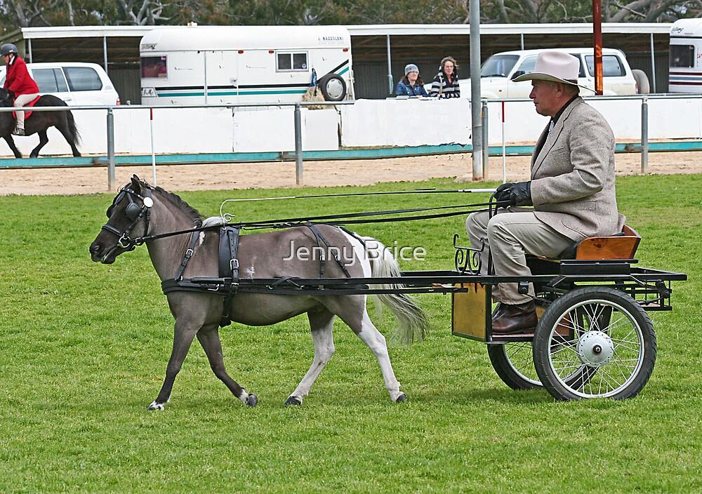 Pony In Harness by Jenny Brice