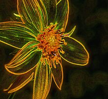 Glowing Maximilian Sunflower by SmilinEyes