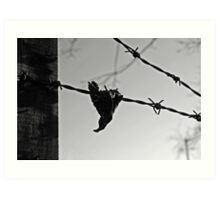 leaf on wire Art Print