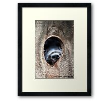 The Other Side of The Infamous Peep Hole Framed Print