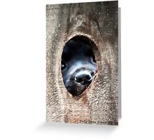 The Other Side of The Infamous Peep Hole Greeting Card