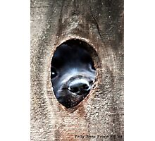 The Other Side of The Infamous Peep Hole Photographic Print