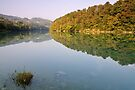Autumn morning along the Rhone river by Patrick Morand
